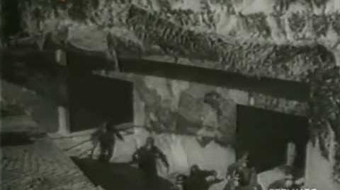 România în al II-lea Război mondial - 10. 23 August întoarcerea armelor