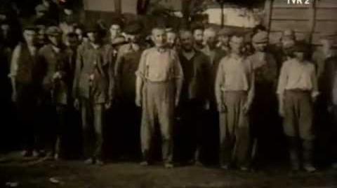 România în al II-lea Război mondial - 7. Vremelnica reîntregire