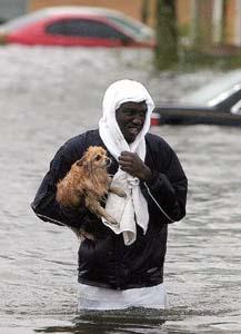 File:Man saving dog.jpg