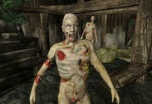 Rotting Zombies
