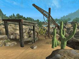 Desert Creature Camp 1