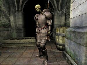 Higher Skeleton01
