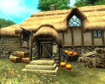 Erothin, Big Farmer's House