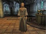 Gogorn the Mystic
