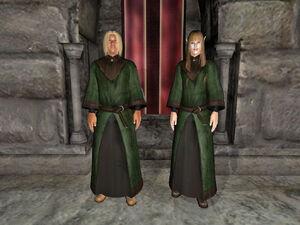Druid Robe