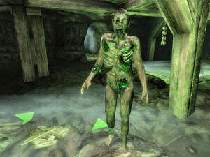 Magically Contaminated Zombie02