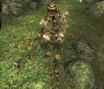 DiseasedSkeleton