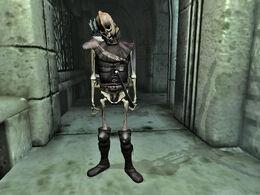 Skeleton001