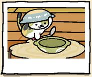 Album Chairman Meow