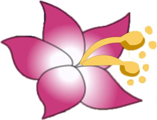File:Hawaiian Flower (rescale).png