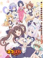 Nekopara_(Anime)