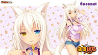 Coconut NEKOPARA Vol 1 Artwork 5
