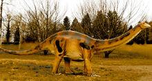 Asiatosaurus-wikidino