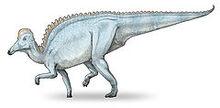 240px-Amurosaurus-v3