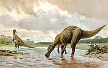 240px-Hadrosaur