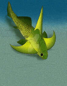 Tiaraspis subtilis by avancna-d2vauyx (1)