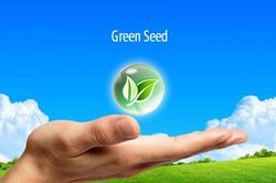 Green-Seed-00