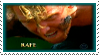 Stamp-Rafe11