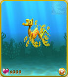 Yellow Seadragon