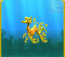 Yellow Seadragon