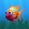 Fish ambient orange