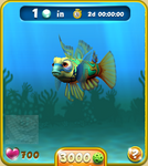 Olive Mandarinfish
