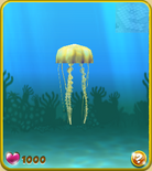 Yellow Jellyfish