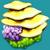 LIV Yellow Plateau Plant