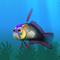 Fish firefish black