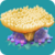 COR Bamboo Coral