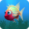 Fish ambient grey