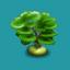 ORN Green Marine Bonsai
