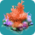 COR Red Christmas Tree Coral