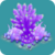 COR Purple Bonsai Acropora Coral