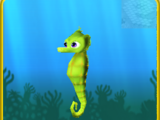 Green Seahorse