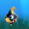 Fish ordinary orange