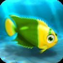 FISHR Yellow-Green Bicolor Angelfish
