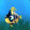 Fish ordinary yellow
