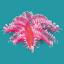 ORN Ruby Sea Flower
