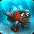 Fish rare clown frogfish black
