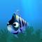 Fish ordinary blue