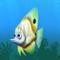 Fish beaked green