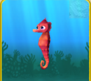 Red Seahorse