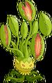 Chompweed