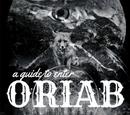 A Guide to Enter Oriab