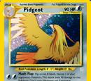 Pidgeot (Neo Redux 18)