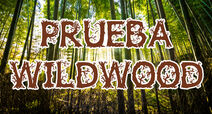 Prueba Wildwood