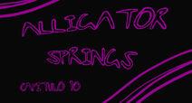 AlligatorSprings10
