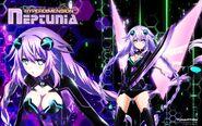 HDNA-Purple Heart WP Funimation