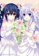 Noire and nepgear as flower girls